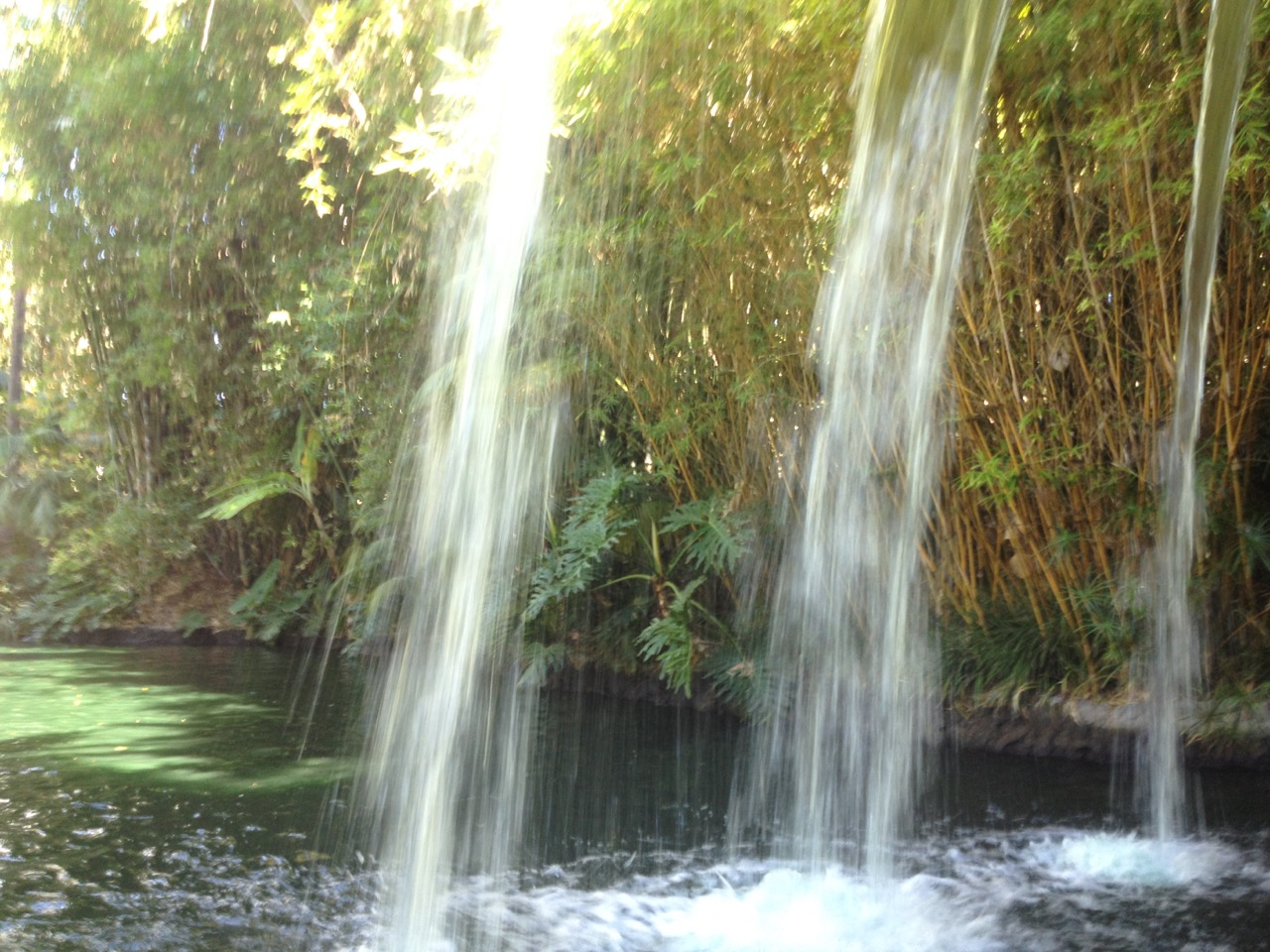 The backside of water in the original Schweitzer Falls at Disneyland's Jungle Cruise. Photo by J. Jeff Kober