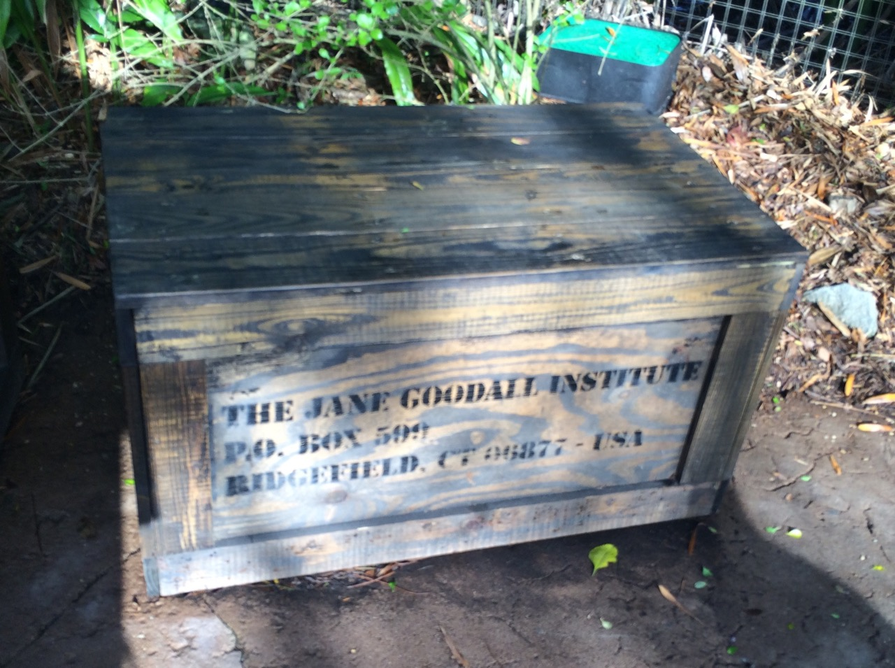 A tribute to Jane Goodall's work near the Gorilla exhibit at Disney's Animal Kingdom. Photo by J. Jeff Kober.