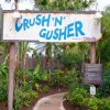 Crush 'n' Gusher Competition